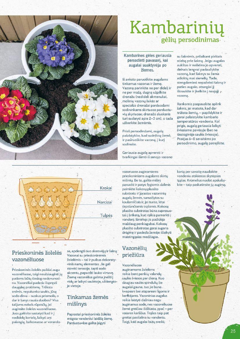 Asortimento katalogas page 25