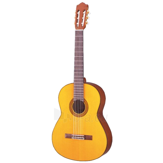 Akustinė gitara C80 II