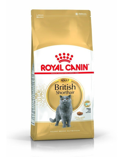 Royal Canin British Shorthair Adult 10 kg