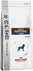 Royal Canin Gastro Intestinal Junior 10kg